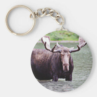 Moose Stare Down Keychains