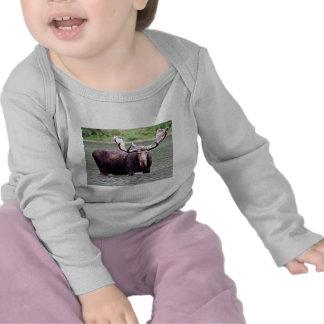 Moose Stare Down Tee Shirts