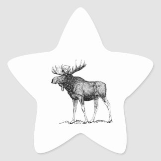 Moose Star Stickers