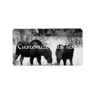 Moose Supper Personalized Address Labels