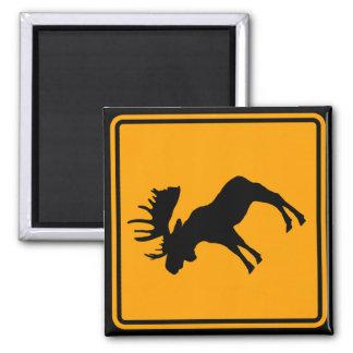 Moose Symbol Yellow Diamond Warning Sign 2 Inch Square Magnet