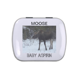 Moose tin for mints, candy, or baby aspirin candy tin