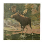 """Moose Walking in Water Tile<br><div class=""""desc"""">Do you live far away from nature? This beautiful and yet classical image gives an impression of peacefulness and the colors of the moose walking in water are accurate which makes this image very realistic. Get this nature styled art on your favorite products!</div>"""