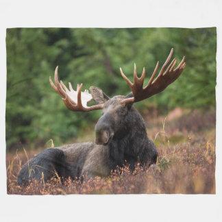 Moose, Wild Animal, Photo, Custom Fleece Blanket