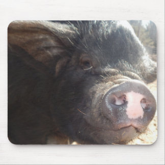 Moosh Snout, Pig Snout Mousepad