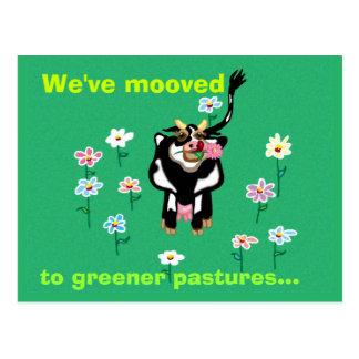 Mooved a pastos más verdes… postales