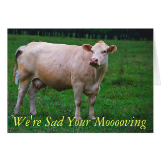 Mooving Stationary Card