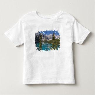Moraine Lake, Canadian Rockies, Alberta, Canada 2 Toddler T-shirt
