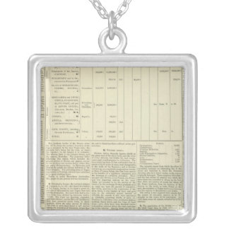 Moral and Statistical Chart of the Globe continued Silver Plated Necklace