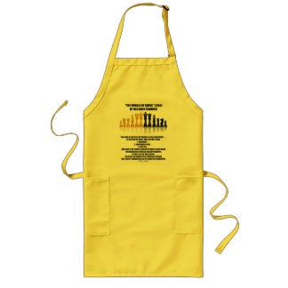 Morals Of Chess Benjamin Franklin Reflective Chess Long Apron