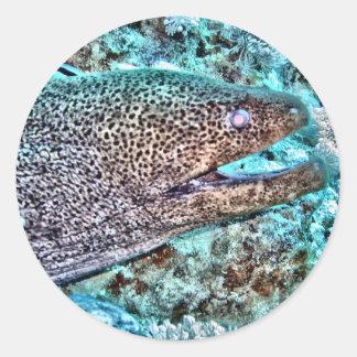 Moray Eel Classic Round Sticker