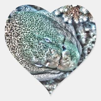 Moray Eel face Heart Sticker