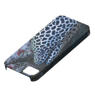 Moray Eel iPhone SE/5/5s Case