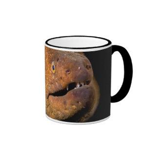 Moray Eel Ringer Mug