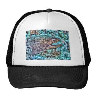 Moray Eel Trucker Hat