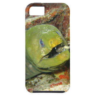 Moray Mouth iPhone SE/5/5s Case