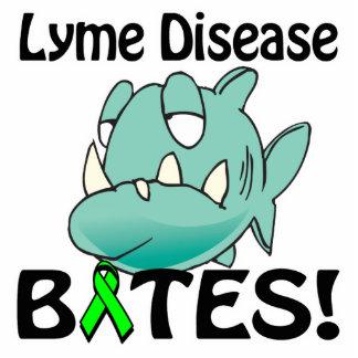 MORDEDURAS de la enfermedad de Lyme Escultura Fotografica