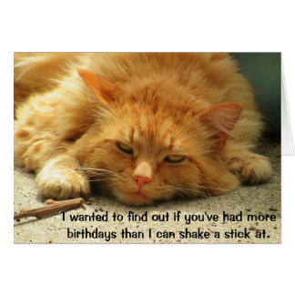More Birthdays Than You Can Shake a Stick At Greeting Card