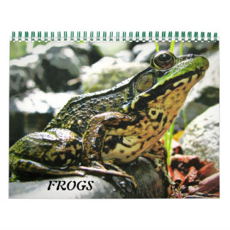 More FROGS! Calendar