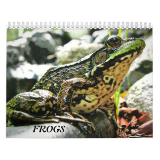 More FROGS! Calendar