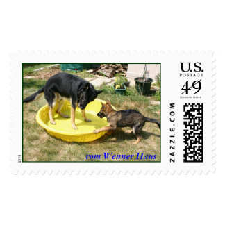 More fun in the summer sun postage stamp