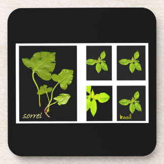 More herbs! drink coaster