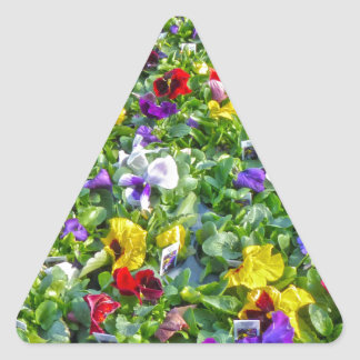 More Pansies Triangle Sticker
