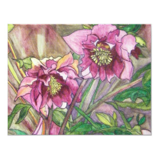 More pink hellebores announcements