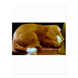 MORE PUPPIES POSTCARD