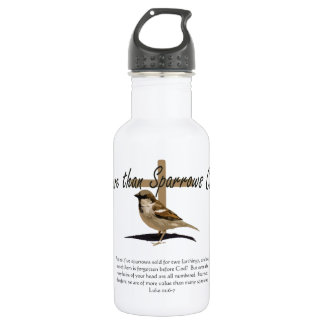 More Than Sparrows Stainless Steel Water Bottle