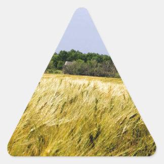 More then the wheat triangle sticker