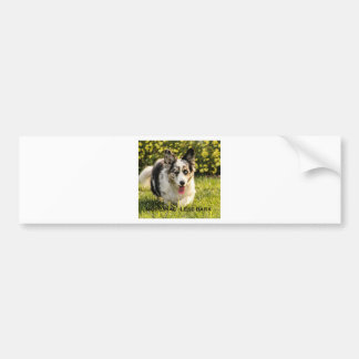 More Wag - Less Bark Bumper Stickers