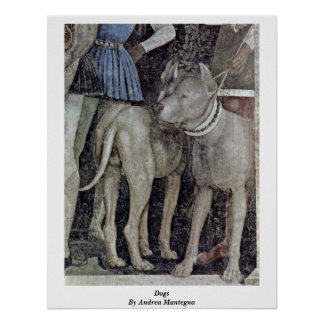 More Waiting Grooms: Dogs By Andrea Mantegna Poster