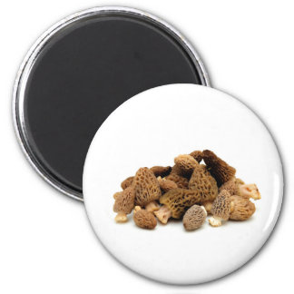 Morel Mushroom 2 Inch Round Magnet