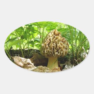 """Morel Mushroom - """"In Hiding"""" Sticker"""