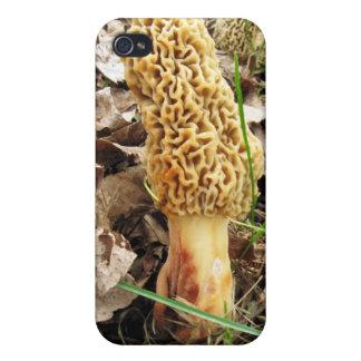 Morel Mushroom  iPhone 4 Cases