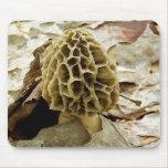 Morel Mushroom Mouse Pad