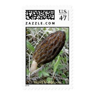 Morel Mushroom on Unalaska Island Postage Stamp