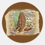 Morel Mushroom Sticker