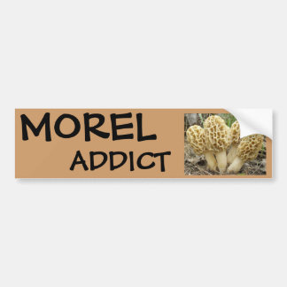 Morel mushrooms bumper sticker