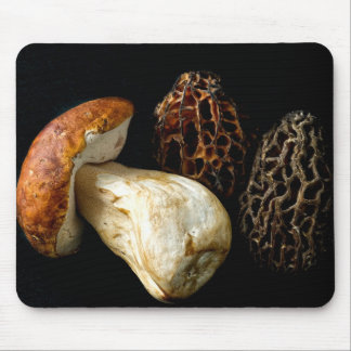 Morels and King Bolete Mouse Pad