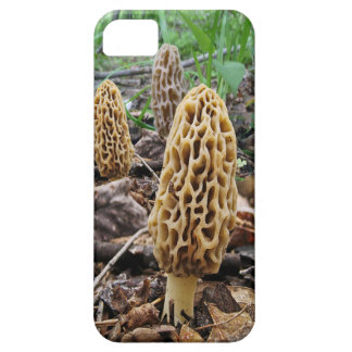Morels iPhone SE/5/5s Case