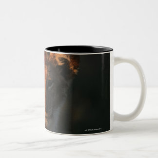 Moremi Wildlife Reserve, Botswana 2 Two-Tone Coffee Mug