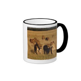 Moremi Wildlife Reserve, Botswana Ringer Mug