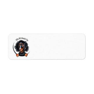 Moreno de pelo largo IAAM del negro del Dachshund Etiqueta De Remite