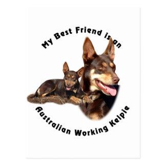 Moreno ROJO de trabajo australiano del Kelpie del Postal