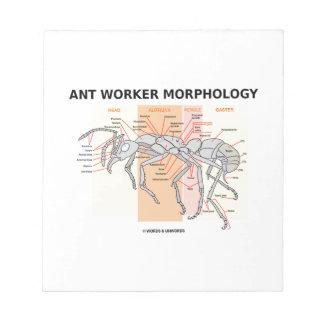 Morfología del trabajador de la hormiga libreta para notas