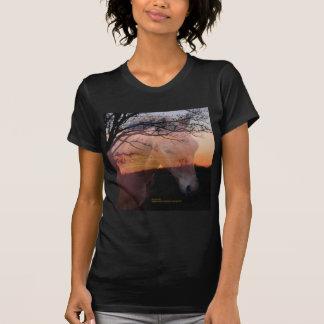 Morgan Colt in Sunset Shirt