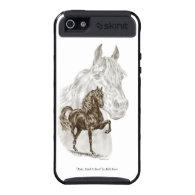 Morgan Gaited Horse Art iPhone 5 Cases