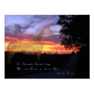 Morgan Horse Accomplish Great Things Postcard